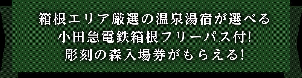 1箱根エリア厳選の温泉湯宿が選べる 2小田急電鉄箱根フリーパス付! 3彫刻の森入場券がもらえる!